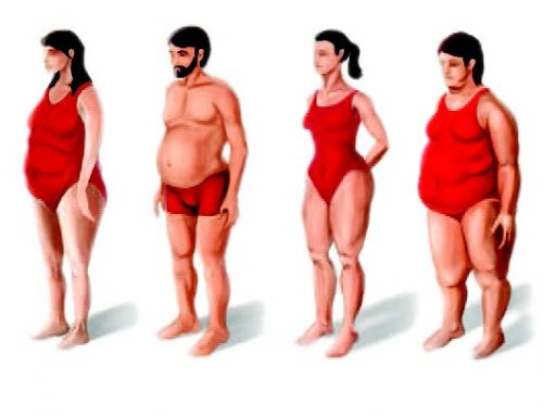 Body Type – How it Can Be Related to Your Health