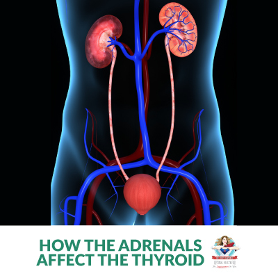 How the Adrenals Affect the Thyroid