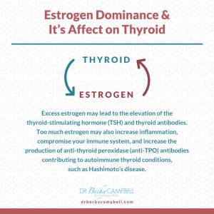 thyroid-estrogen